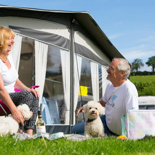 Whitehill Country Park - Camping - Dog Friendly